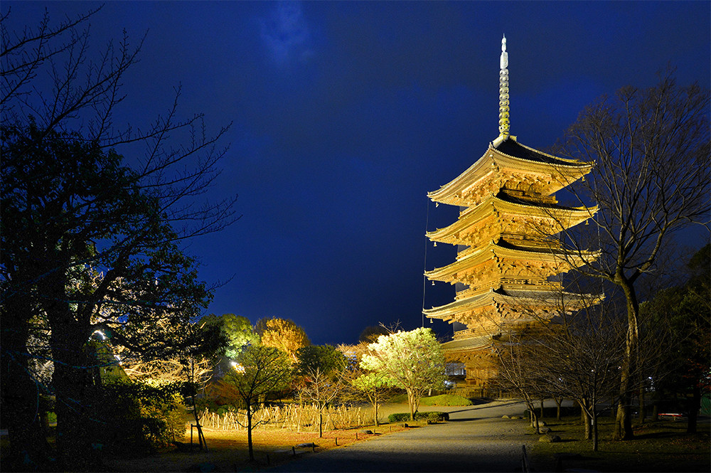 Meticulously Designed Illumination:To-ji Temple Brightens up Kyoto Evenings