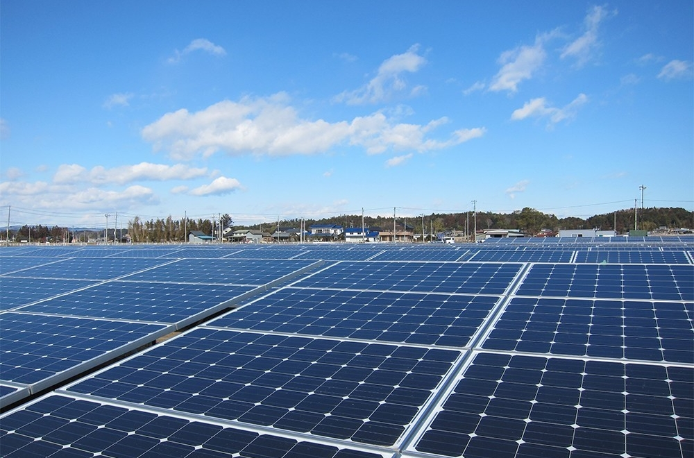 IMAGE OF SOLAR PANELS AT THE SOLAR AGRIPARK
