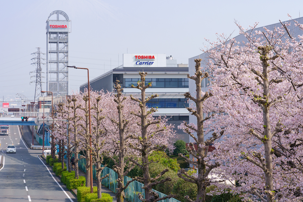 e-THIRD behind a row of cherry trees in full blossom