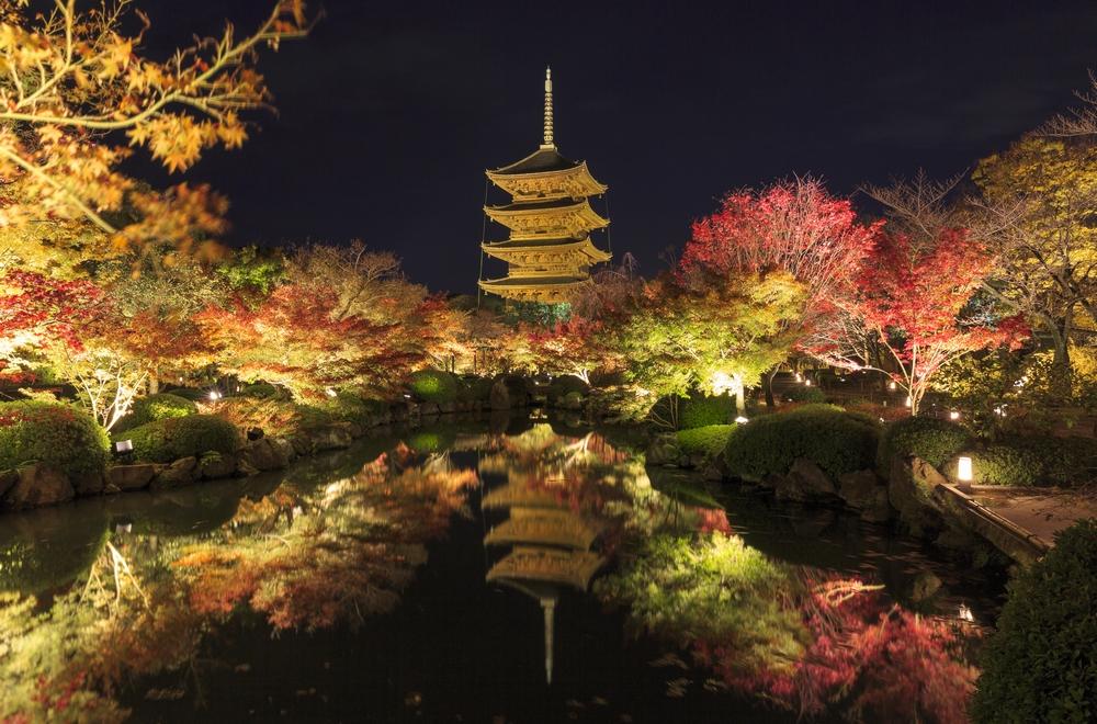 東寺五重塔が金色に輝く京都の夜 綿密に設計されたライトアップ