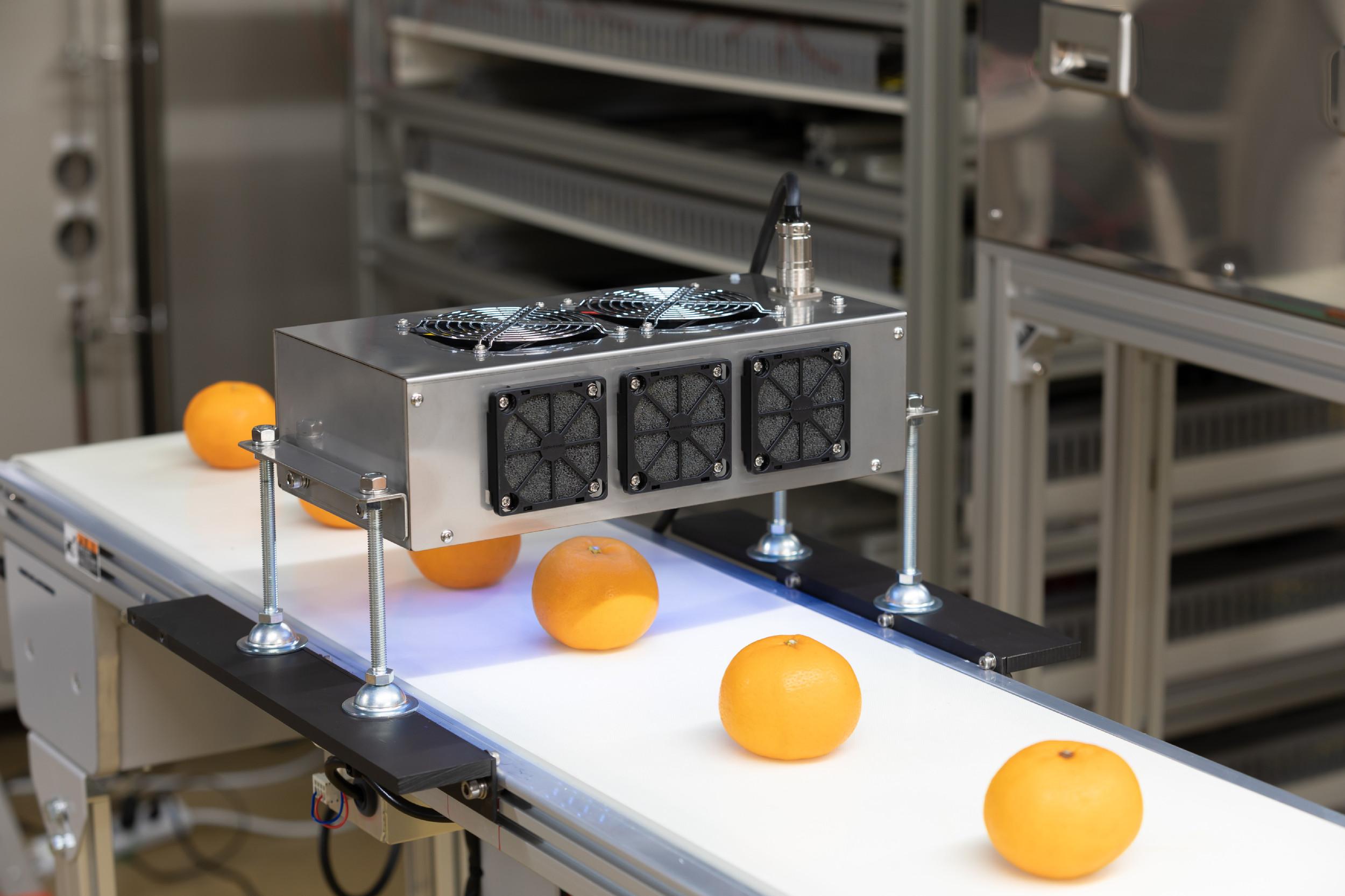 光の技術でフードロス解決に貢献 UV-LEDが照らしだす未来(前編)