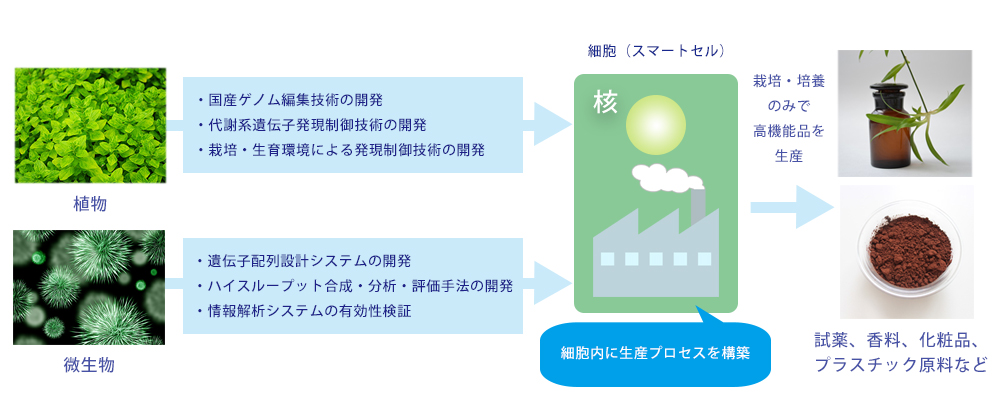 スマートセル構築による高機能品生産技術開発