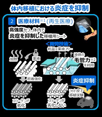 高強度で、体内での炎症抑制が期待されるコラーゲンシート
